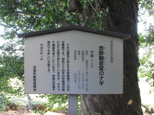 Akeno_nagi_1s