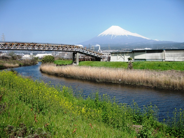 Numagawa_fuji20100314_8s