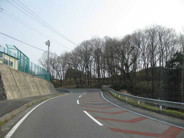 Katakuri_20100320_1s