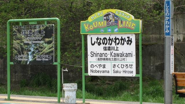 Kawakamieki_1s