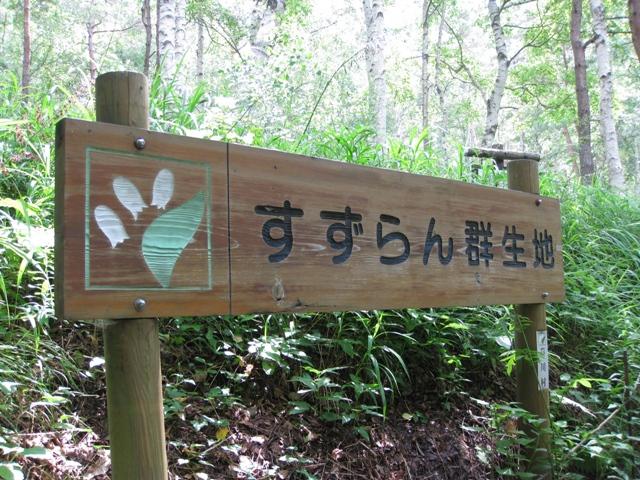 Suzuran_asigawa_1s
