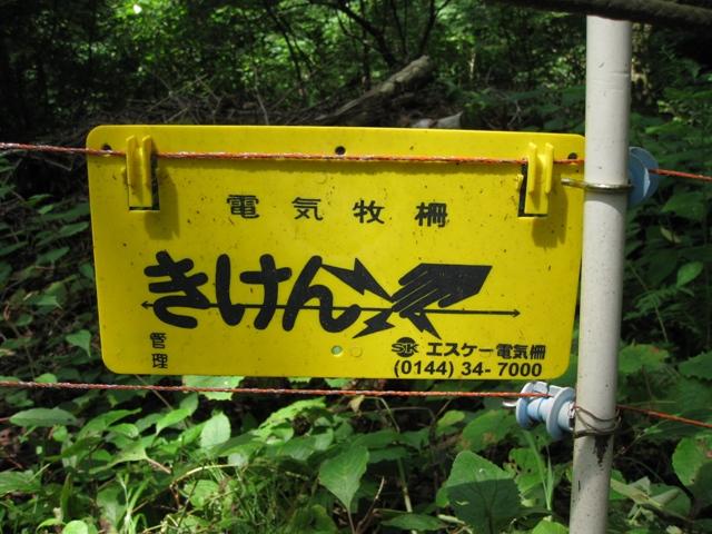 Suzuran_asigawa_4s