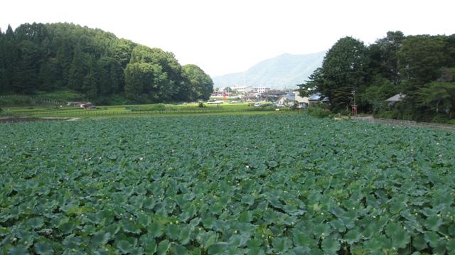 Asumiko_0828_3s