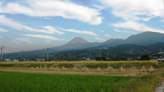 Mitugasiwa_nh1s