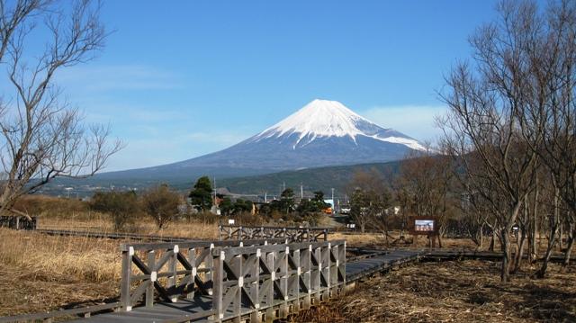 Fujisan1231_5s