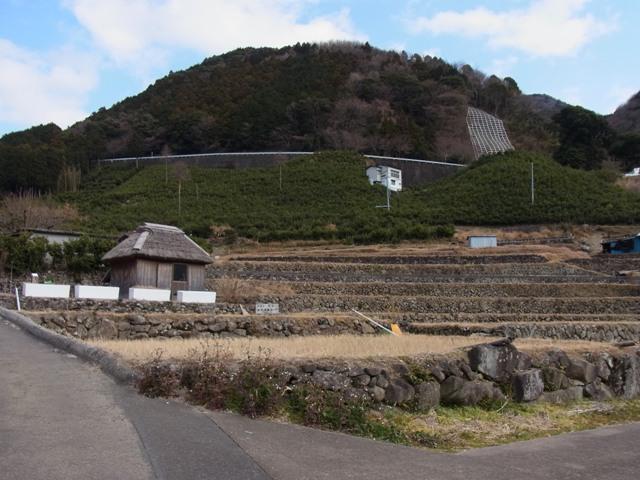 Tanada_kitayama_2s