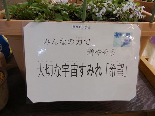 Sumireten_00402_2s