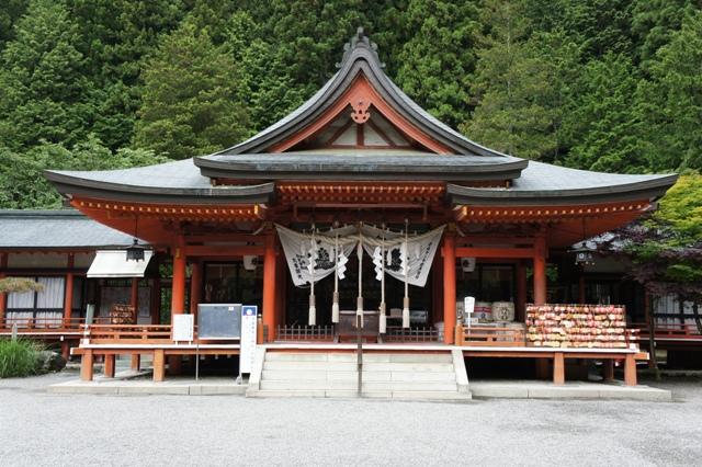 Kanazakura_dsc00831s