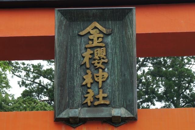 Kanazakura_dsc00854s