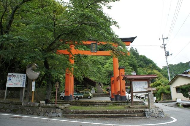 Kanazakura_dsc00855s
