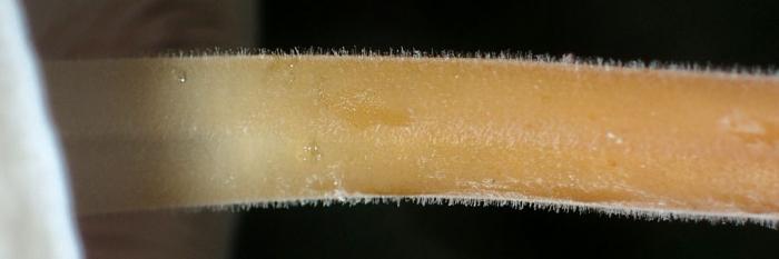 Apb180405